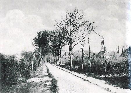 HVB FO 00641  Schoollaan (foto van Sluislaan er afgeknipt), poststempel 1901